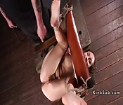 Busty babe in bondage anal fingered