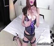Vivacious trans Plam in a vanilla sex