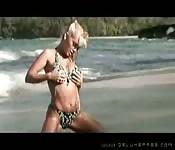 Devon scopa suolla spiaggia