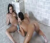 Chattes coquines se font prendre dans la douche