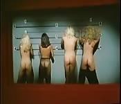 Vintage porno scene collection