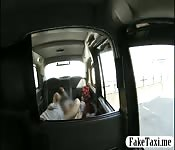Passenger licked and banged in her pussy