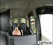 Chubby passenger banged by fake driver