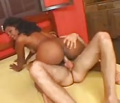Brésilienne aux petits seins et au gros cul