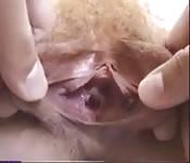 Petite chatte toute serrée
