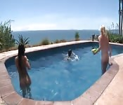 Troie bagnate e selvagge giocano in vacanza.
